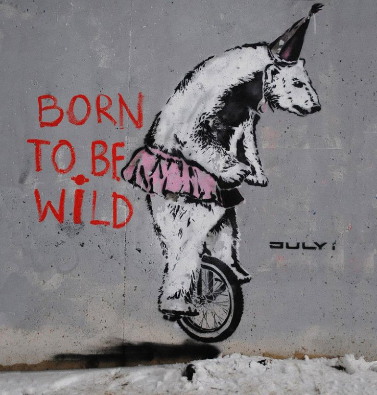 Banksy Born to be Wild