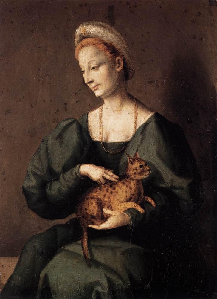 Francesco Ubertini detto il Bacchiacca, Dama con gatto, 1540 ca - da Finestresullarte