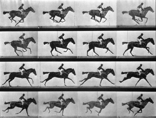 Sallie Gardner at a Gallop, come fu concepita in origine.Queste immagini fotografiche furono pubblicate per la prima volta a Philadelphia nel 1887. - da Wikipedia